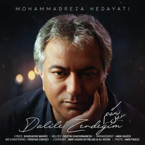 دانلود موزیک جدید محمدرضا هدایتی دلیل زندگیم