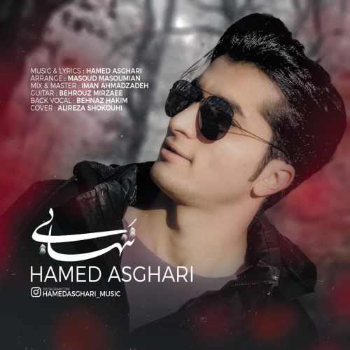 دانلود موزیک جدید حامد اصغری تنهایی