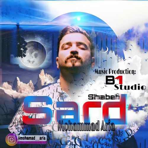 دانلود موزیک جدید محمد آریا شب سرد